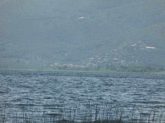 Λίμνη Τριχωνίδα!!  P1080443