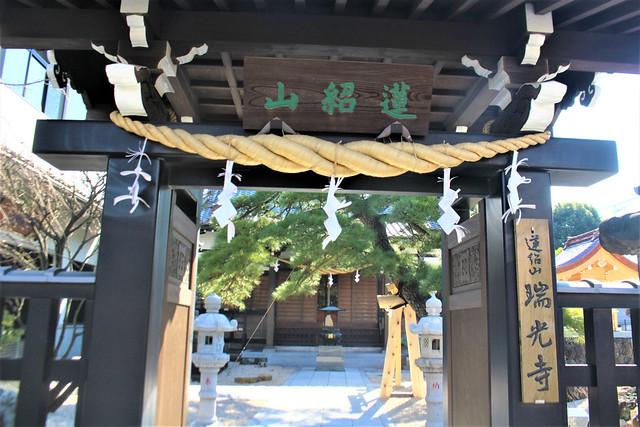 zuikoji-gosyuin011