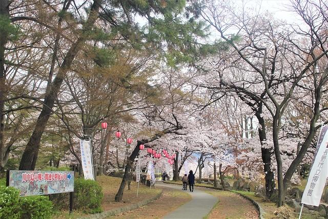 kawanakajima-gosyuin015
