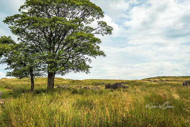 SJ2_1019 - Lancashire countryside