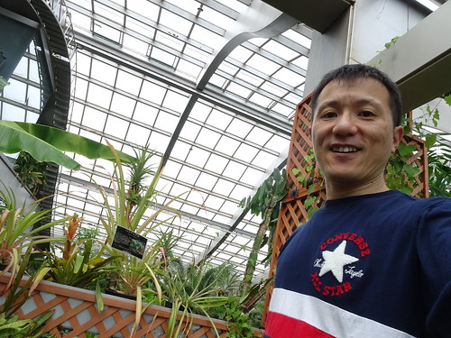 子供と車で板橋区立熱帯環境植物館