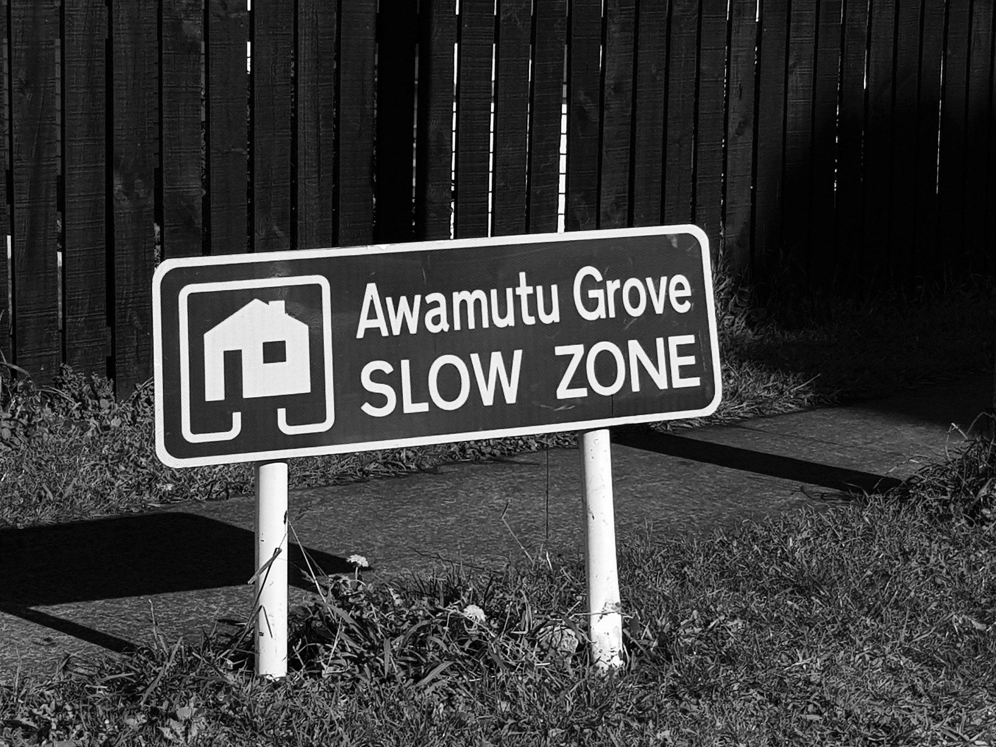 20190717_112502 (Slow zone)
