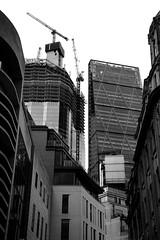 London 93526bw