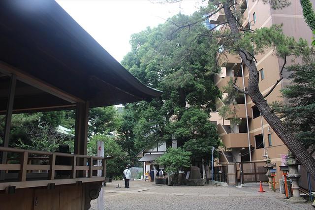kamimeguro-gosyuin006