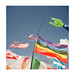 FILM - Flags-2