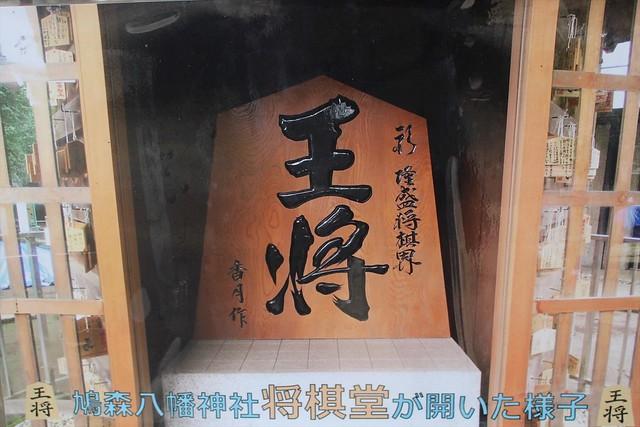hatomori-gosyuin025