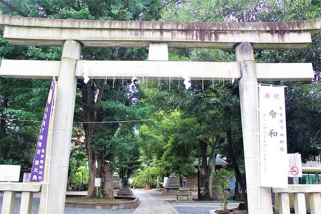 hatomori-gosyuin023