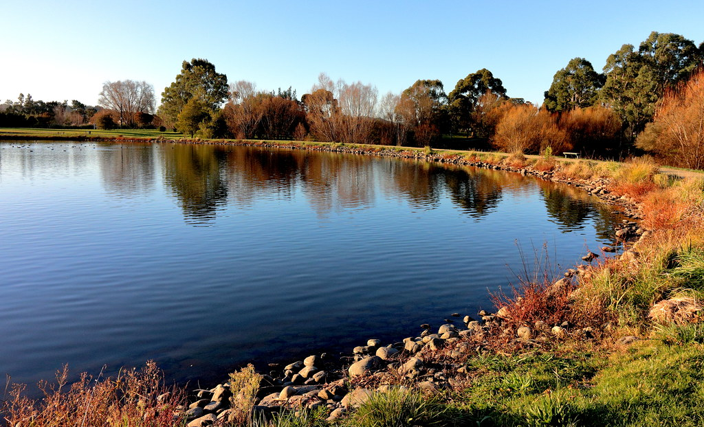 Beautiful Lake Henley .Masterton  . NZ .
