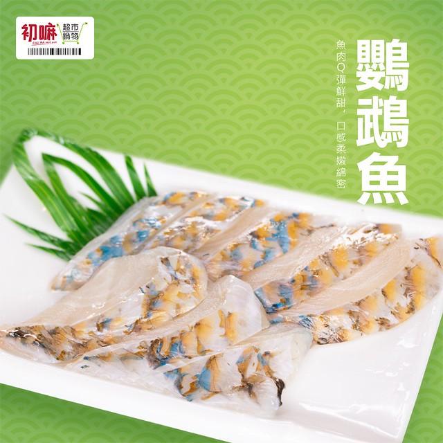 鸚鵡魚-0001