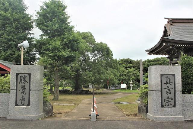 syokakuji-gosyuin018
