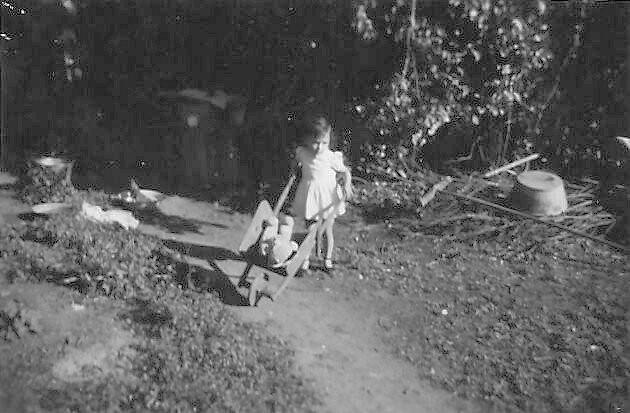 Pour FRANCOISE, moi-même petite fille, (je devais avoir 2 ans), je promène mon gros Nounours dans ma petite brouette...