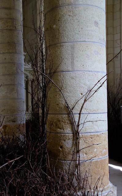 Mirabilia - expo à Fontevraud