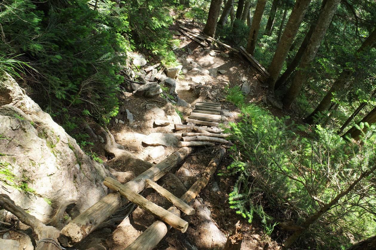 奈良田までの下山路