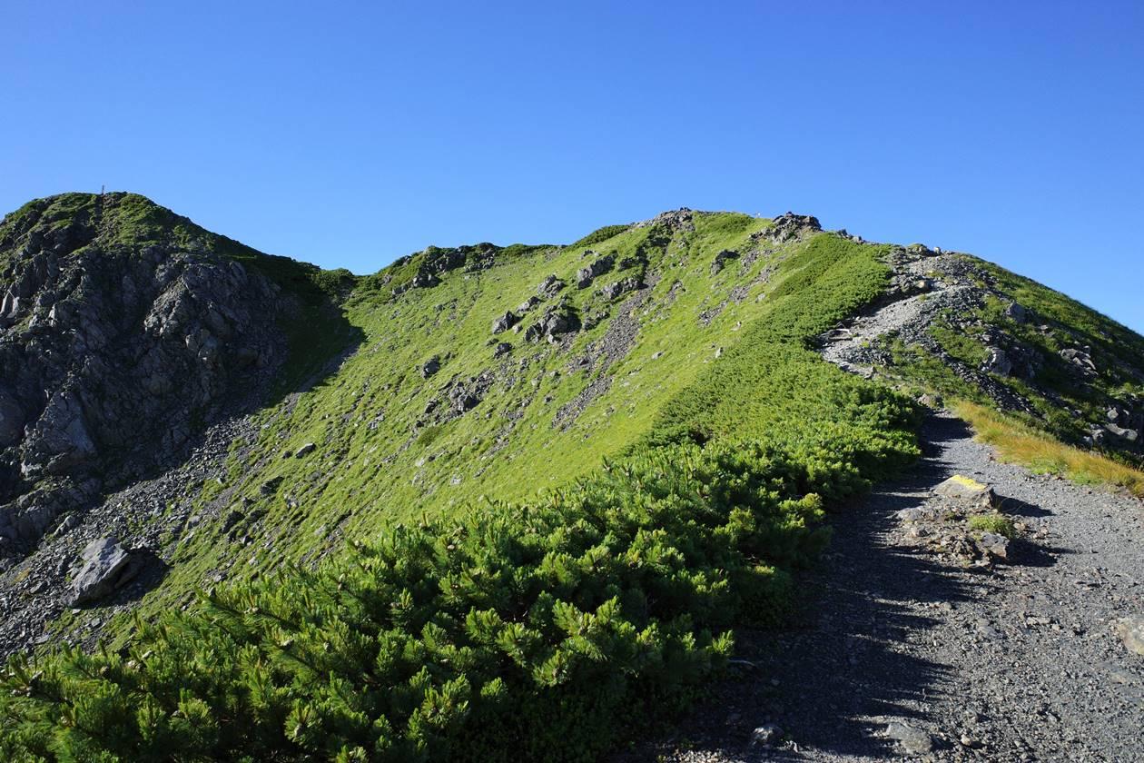 西農鳥岳へ稜線登山