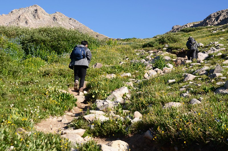 Mount Harvard Trail (the top of Horn Fork Basin to Bear Lake junction) (17)