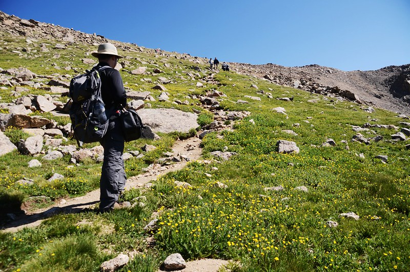 Mount Harvard Trail (the south ridge to the summit) (7)