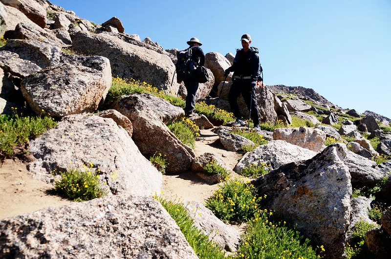 Mount Harvard Trail (the south ridge to the summit) (2)
