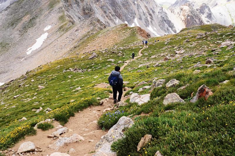 Climbing down from Mount Harvard (7)