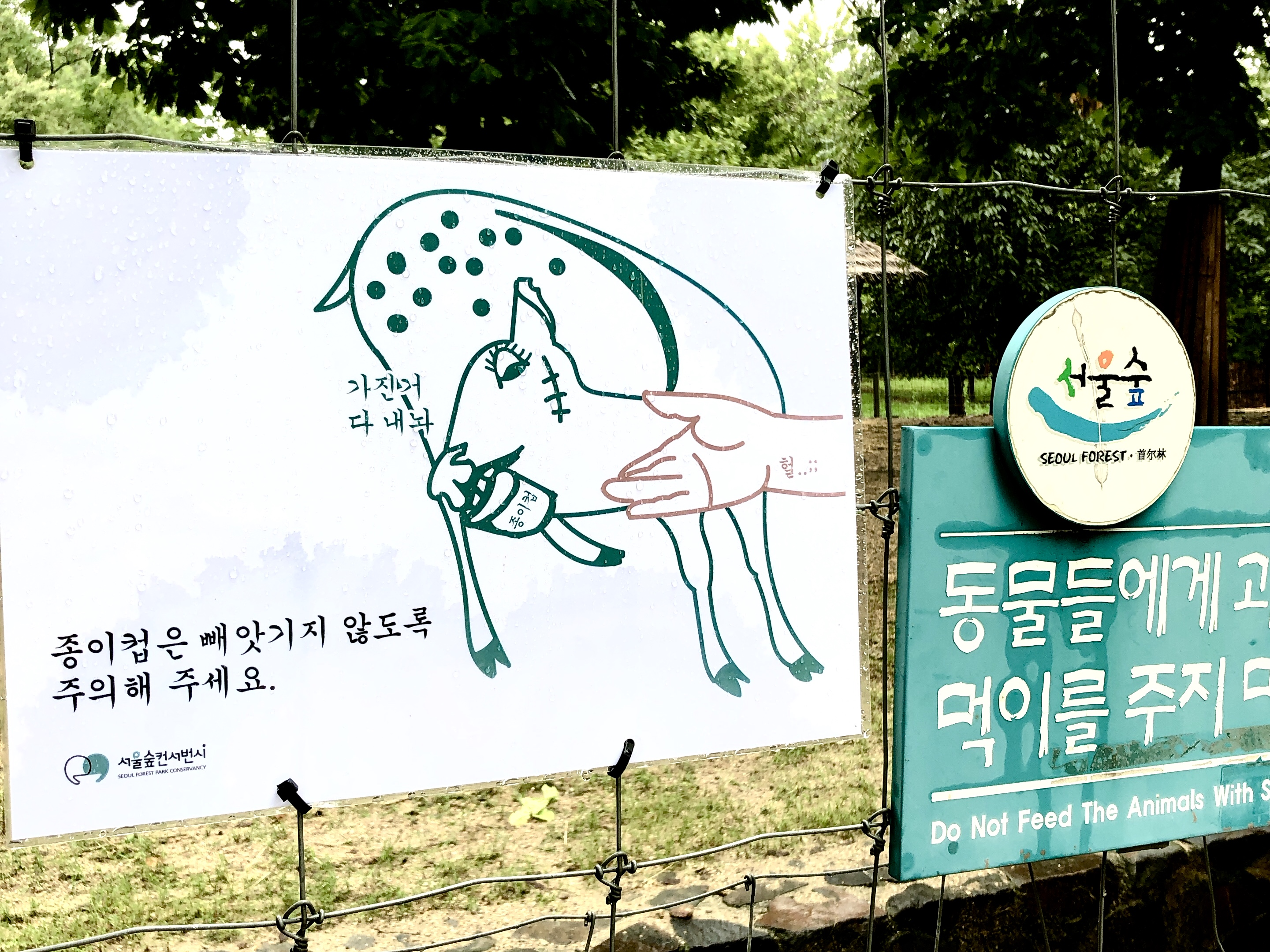 seoulforest13