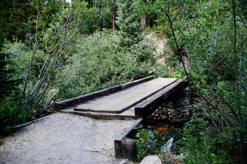 The second footbridge across Cottonwood Creek