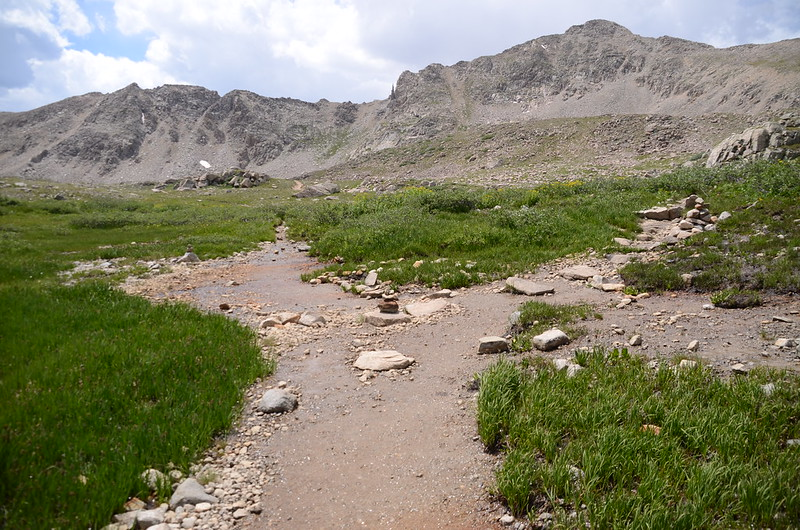 Bear Lake Trail junction