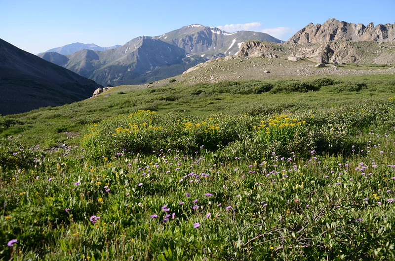 Looking south at Mount Yale from the trail between the top of Horn Fork Basin & Bear Lake junction (6)