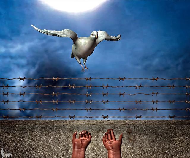 Dream of Peace