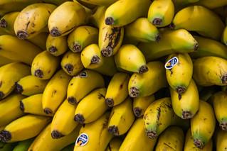 2019 Bananas