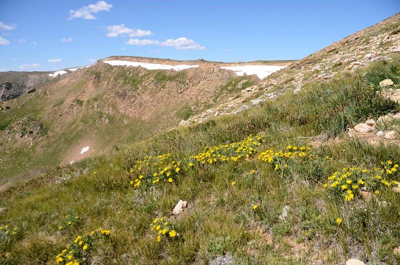 Continental Divide Trail (41)
