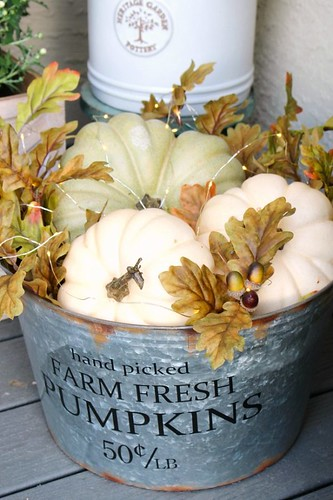 Pumpkins-in-a-galvanized-bucket-from-Clean-and-Scentsible-600x900