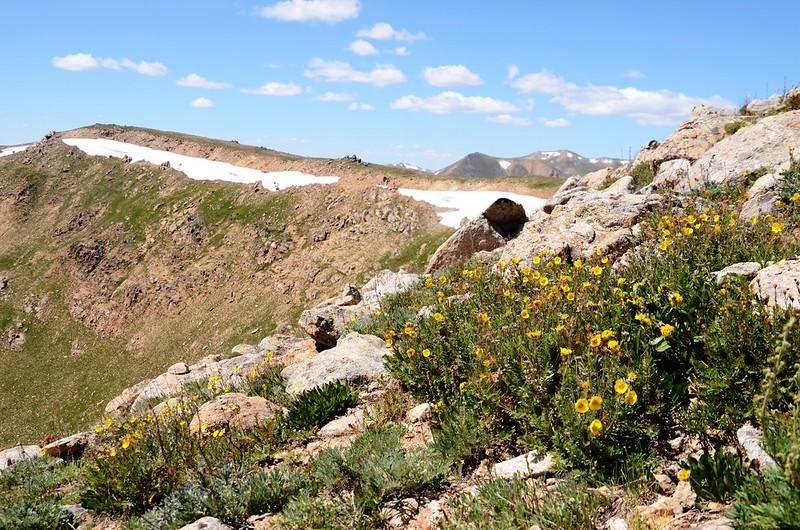 Continental Divide Trail (87)