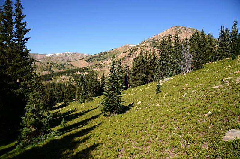 Continental Divide Trail (14)