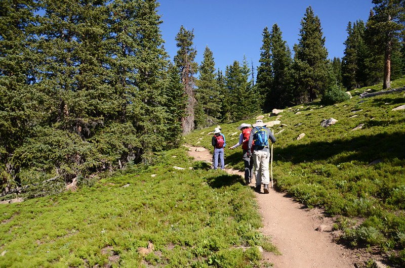 Continental Divide Trail (12)