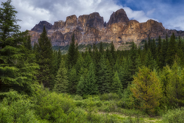 A Closer Look at Castle Mountain