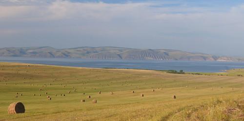 Stacks of hay on the bank of Yenisei River, Khakassia, Russia