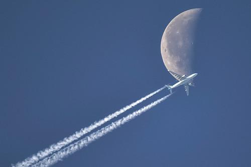 KLM / Airbus A330-203 / PH-AOD