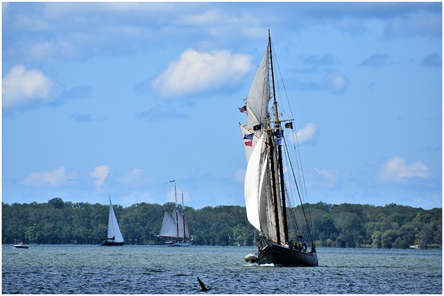 Lettie G. Howard @ Erie, PA Tall Ships Festival 2019 (Photo 2 of 4)