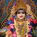 Darshan from IMG_0105