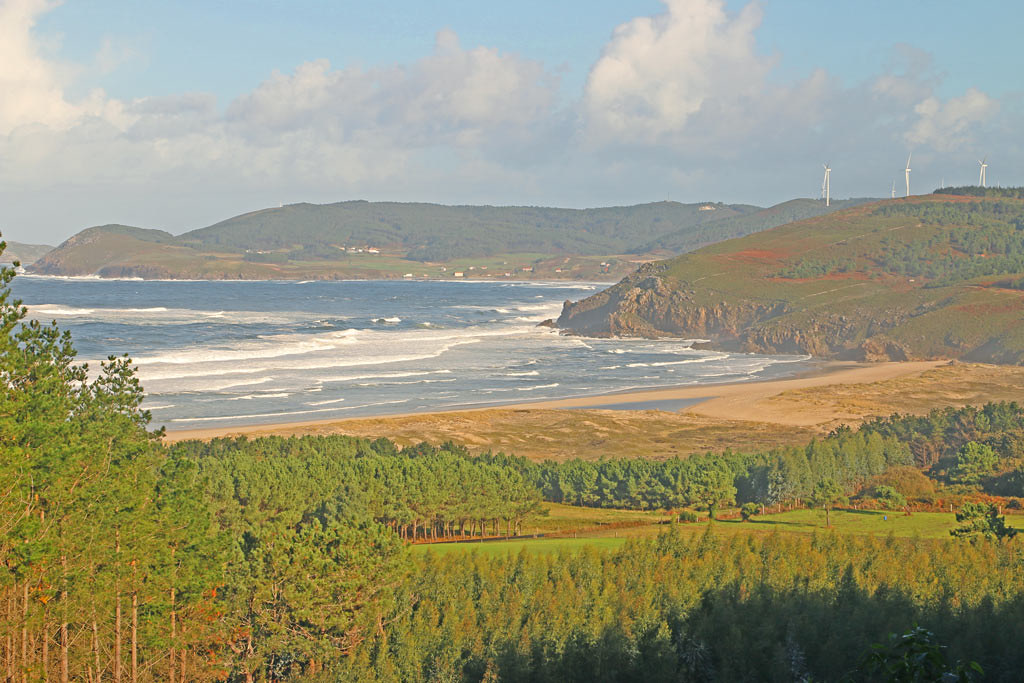 A yelowish scenery of trees leading down to a valley that ends with a beach, and the sea waves coming towards the shore