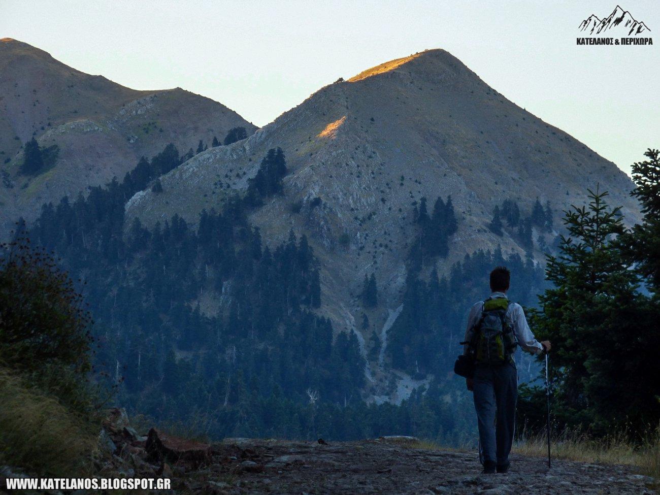 περπατημα πεζοπορια στο βουνο κεδρος παναιτωλικο ορος