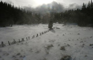 Cold and blowing snow