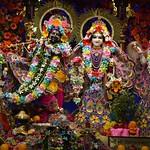 ISKCON Ujjain Deity Darshan 24 Aug 2019