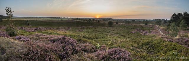 Panorama von der Küstenheide Cuxhaven