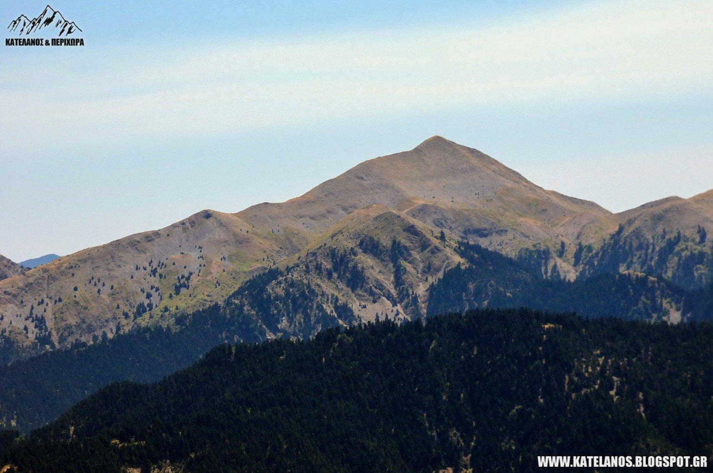 τριανταφυλλια βουνο