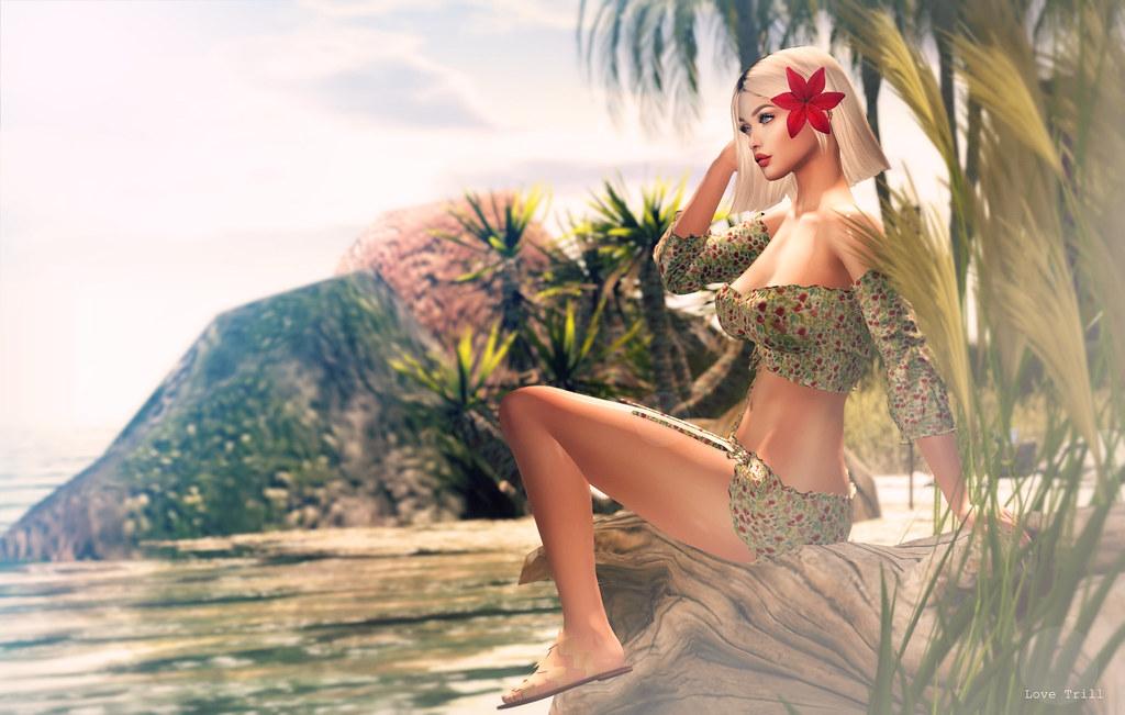 FabFree: Beaching until further notice