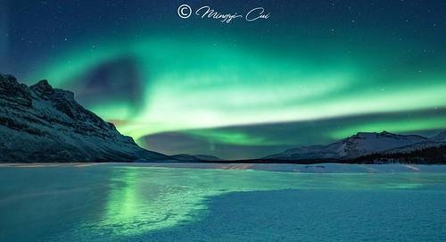 Aurora in Lofoten💚