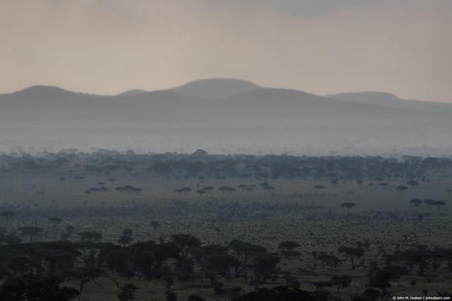 2019.06.07.3377 Nyarboro Hills Migration