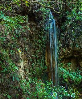 Armchair waterfall on Washpen Falls track