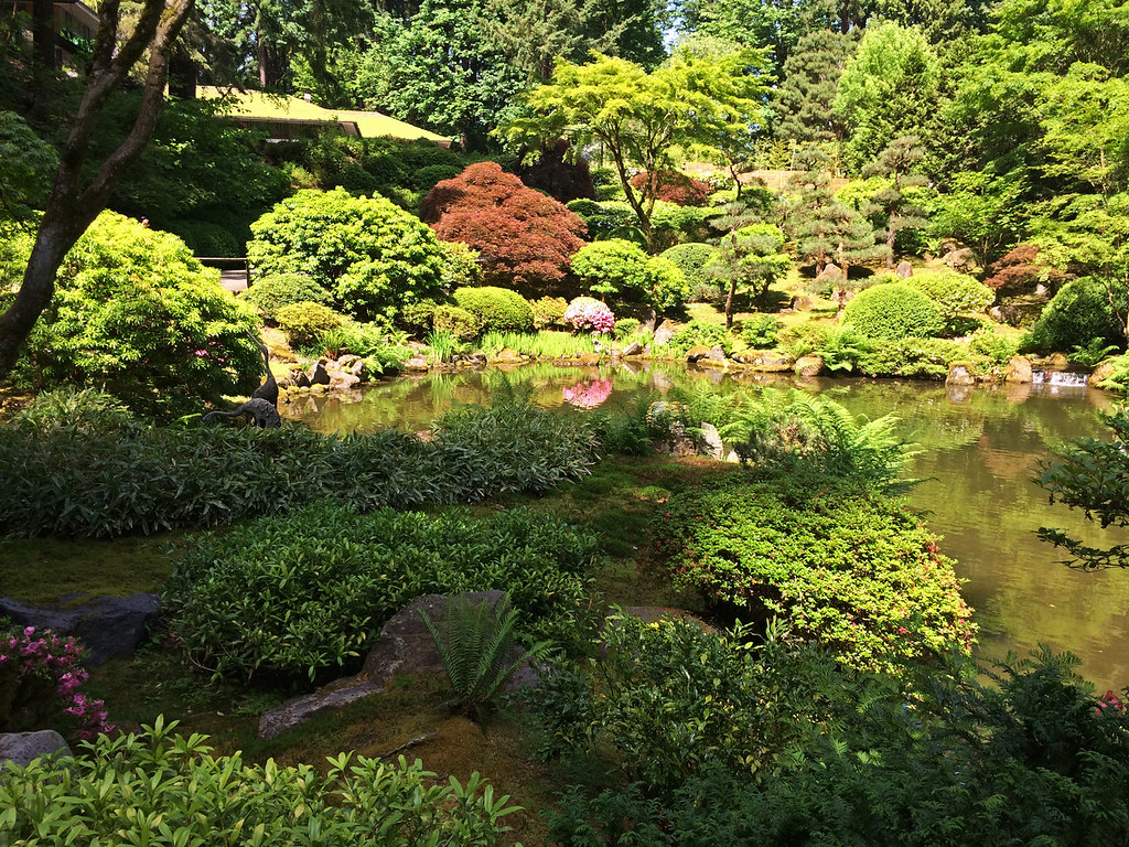 Washington Park Japanese Garden pond Portland, Oregon