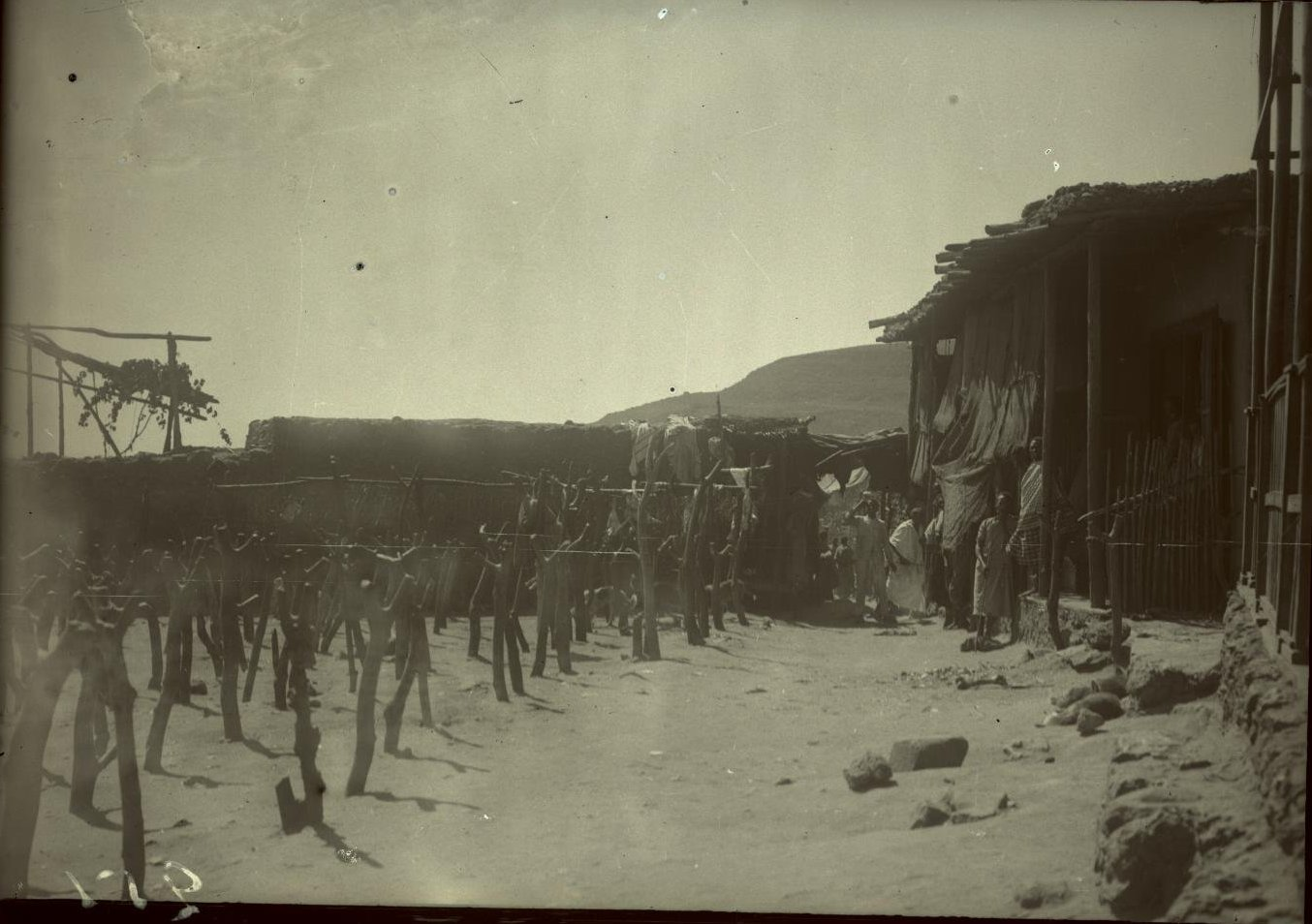 251. Абиссиния, провинция Харар, г. Харар. Мясной рынок